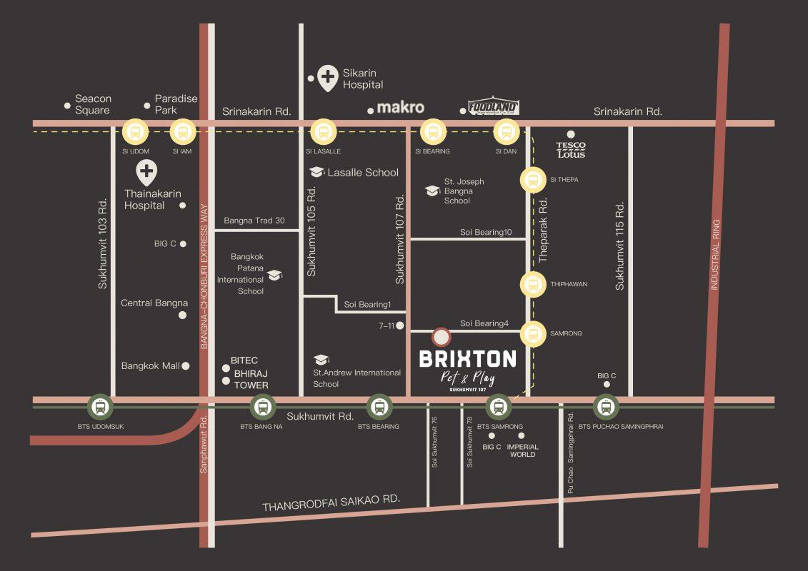 Brixton pet & play